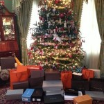 The unwrapping is complete. Happy Christmas by stewartlife12